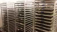 marijuana buds drying in racks biotrackthc