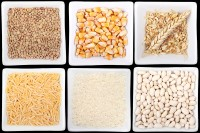 Mycotoxins grains