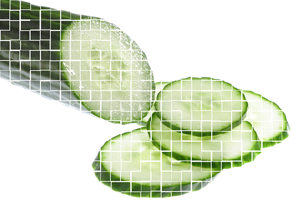 Salmonella outbreak linked to cucumbers