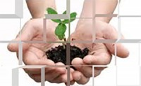 Social responsibility in food safety