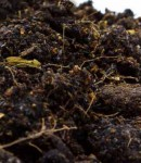 Manure, fertilizer, produce rule