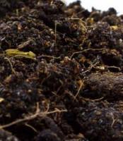 Manure, fertilizer, produce rule