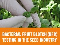 Eurofins - Bacterial Fruit Blotch Testing in the Seed Industry