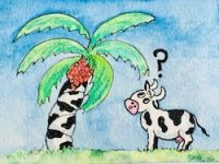 Cow, palm tree, food fraud
