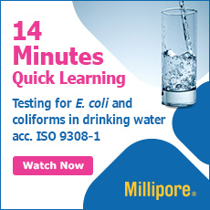 Testing for E.coli in drinking water