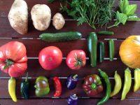 Vegetables, food fraud, Decernis