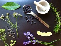 Food fraud, gin, ingredients, botanicals