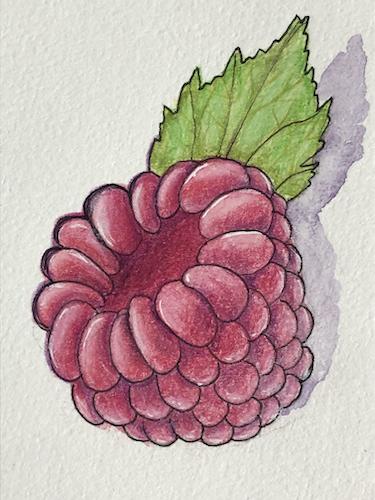 Raspberry, Decernis