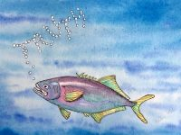Seafood fraud